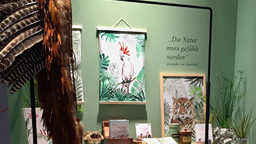 """Behind a feathered headdress, illustrations of a cockatoo and of a tiger hang next to the Humboldt quote """"Nature must be felt""""."""