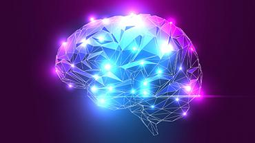 Stilisiertes 3D-Rendering eines Gehirns mit leuchtenden Arealen.